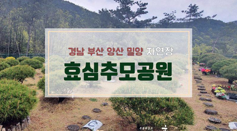경남 부산 양산 밀양 자연장